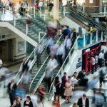 Audience Insight: Crea mejores campañas al conocer mejor tu target